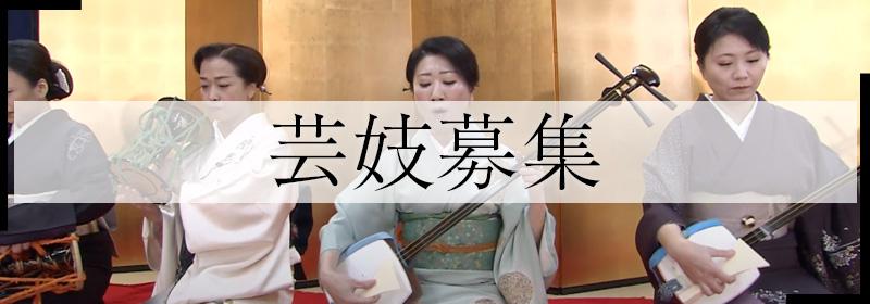安城芸妓組合|安城芸妓文化振興会|笑美会(えびすかい) |安城芸者.芸子.芸姑.接待・お遊びのお座敷を伝統文化のお遊びで盛り上げます。